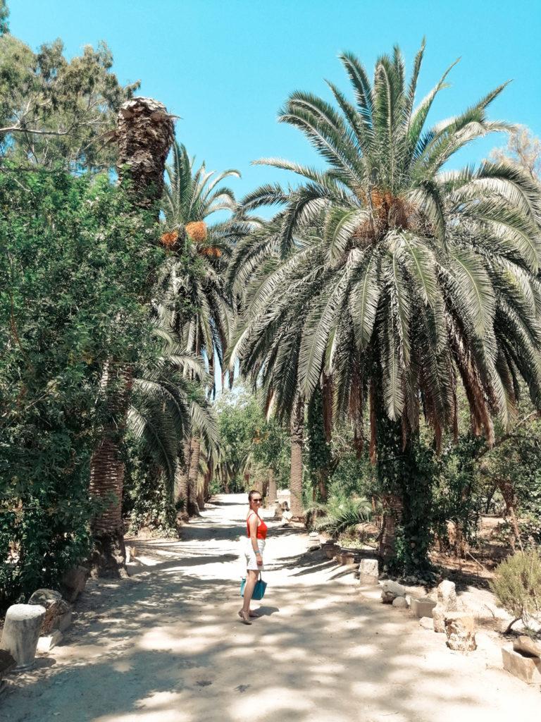 Tunisia Cartagina